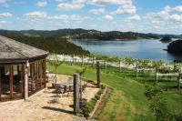 Omata-Estate-Vineyard view.jpg