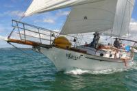 Sailing BOI.jpg