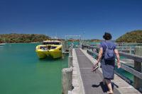 Otehei Bay Wharf.jpg