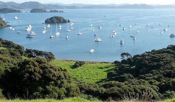 moturua-island