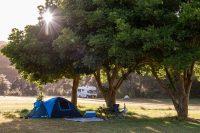 Orongo Bay Holiday Park Campsites.jpeg