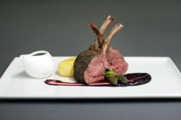 lamb sm.jpg