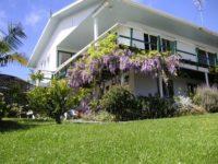 Aimeo Cottage.jpg